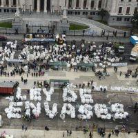 Anuncian la «marcha cartonera más grande del mundo» al Congreso para presentar proyecto de Ley de Envases