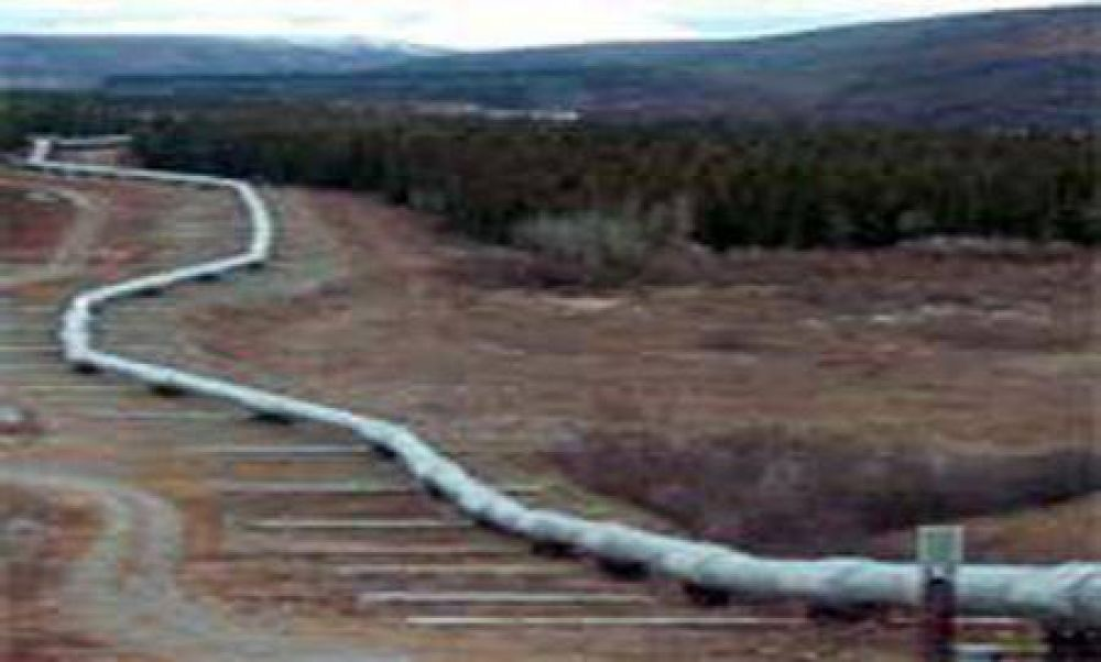 """Insisten en que el Gasoducto del Nordeste """"será una realidad"""""""