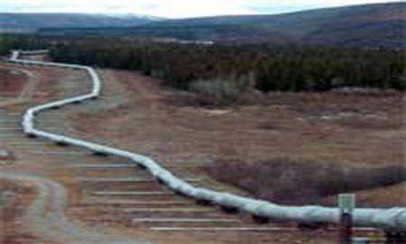"""Insisten en que el Gasoducto del Nordeste """"ser� una realidad"""""""
