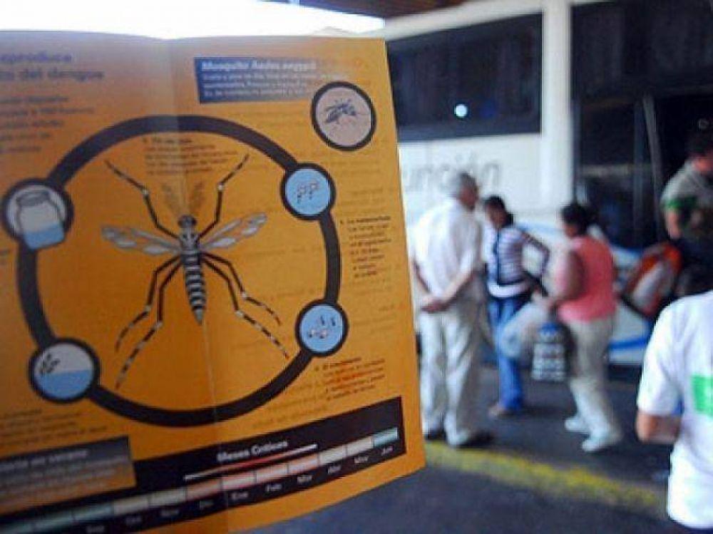 Lanzan campaña de prevención del dengue en Mar del Plata