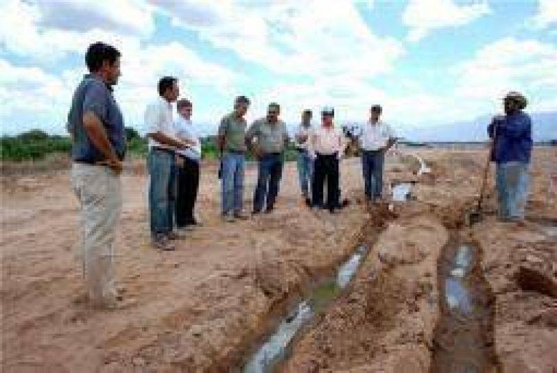 Impulsan novedoso proyecto para la producción de alfalfa
