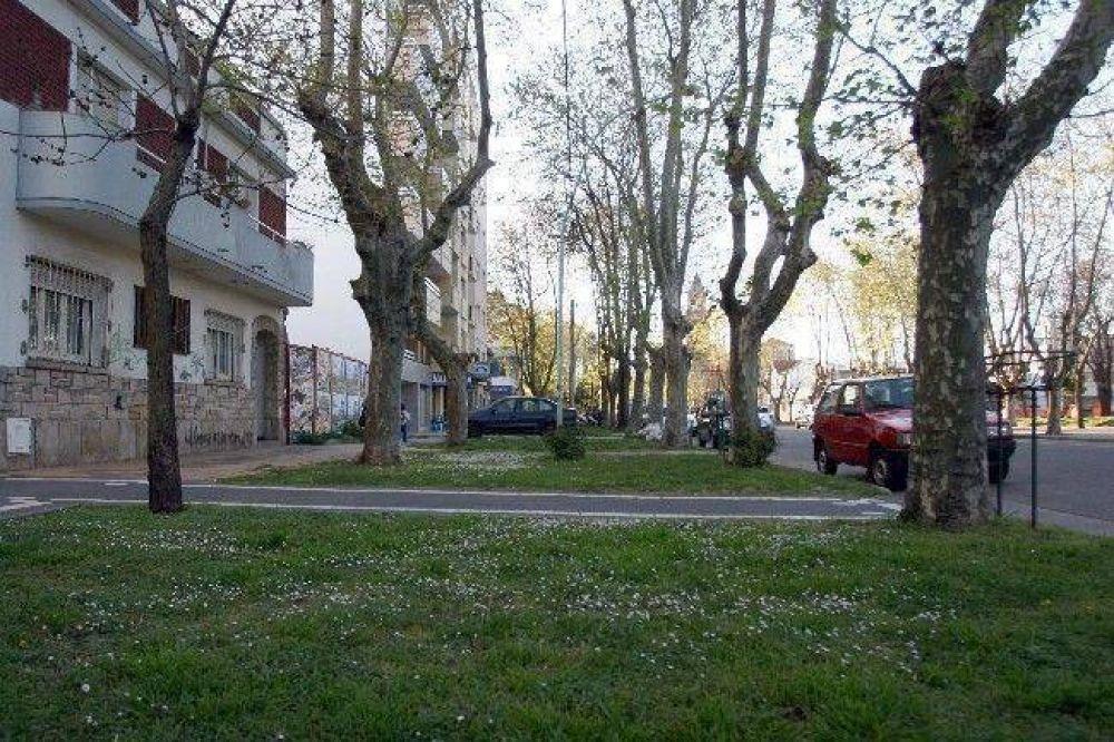 Vecinos de Libertad amenazan con atarse a los árboles como protesta