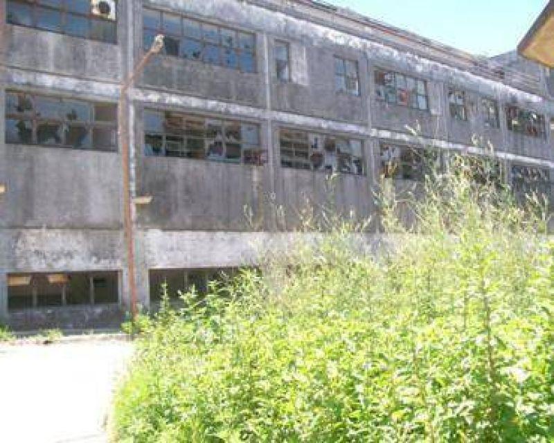 Vieja Usina: abandono y destrozos