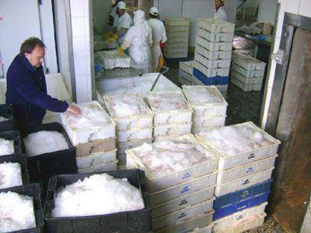 Decomisaron 600 cajones de merluza entera en estado de descomposición