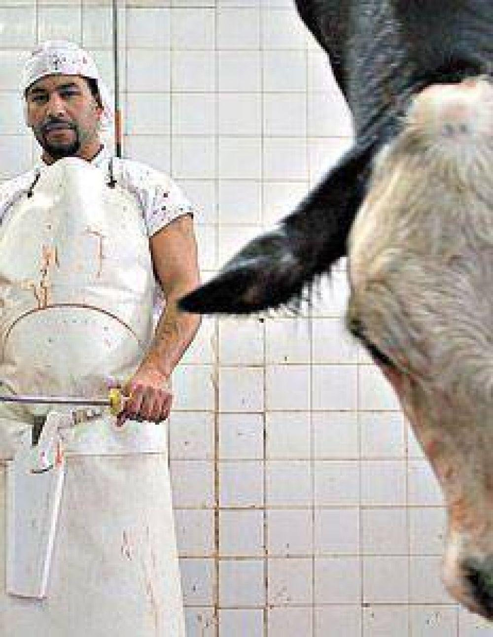 Las vacas demoradas en la Aduana