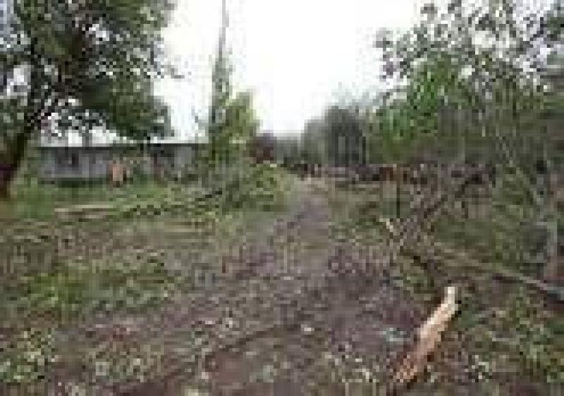 Pronosticaron un verano con más riesgo granicero en Mendoza