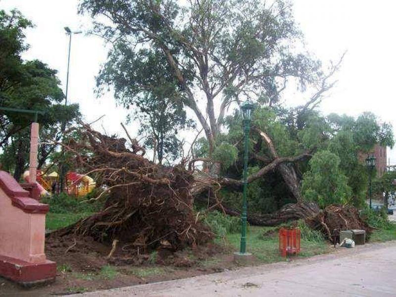 Recuperación: Luego de la última tormenta en la Capital se recogen por día 240 mil kilos de basura
