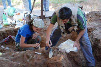 Encontraron en el partido de Saavedra restos fósiles