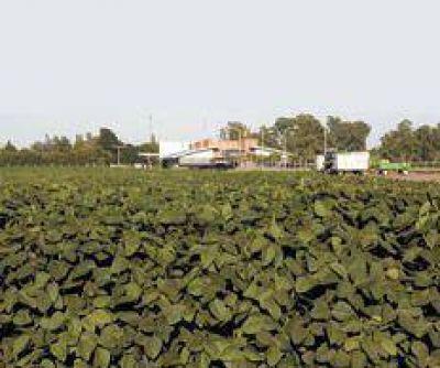 Un freno a los agroquímicos
