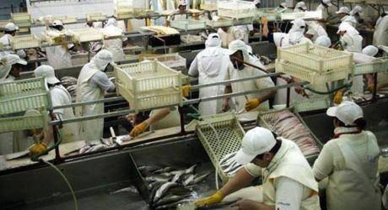 Trabajadores de la pesca paralizan la actividad