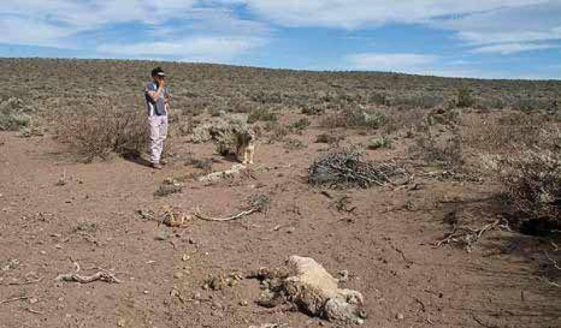 Se viene la peor sequía en décadas y el otoño más árido en 100 años