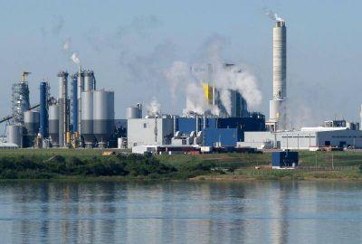 El comité científico ingresó por tercera vez a la planta de Botnia