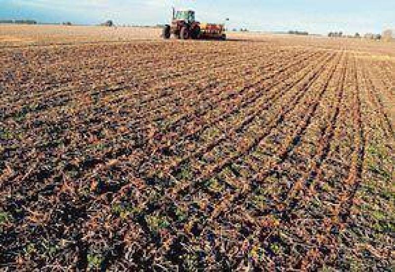 Por primera vez en seis años, cayó hasta 10% el precio de los campos