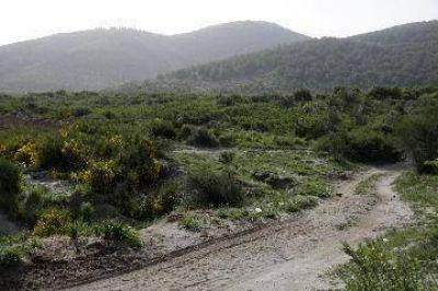 Ambientalistas piden revisi�n de la cota 900