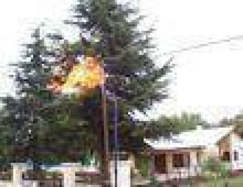 Gas Natural: en la mira de las autoridades de la Naci�n.