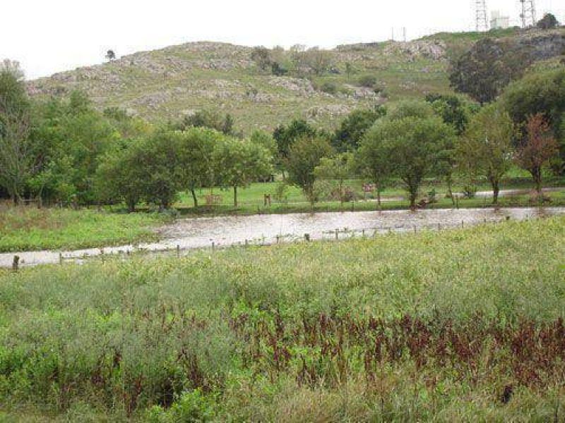 Un proyecto que impulsa la reforestaci�n del cord�n serrano y la implementaci�n de guardaparques.