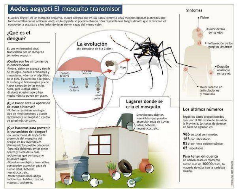 Intensifican acciones contra el dengue