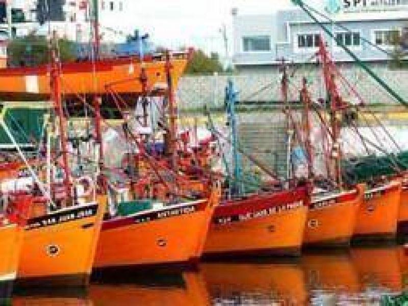 Mar del Plata: Pesqueros analizan pedir hasta un 35 % de aumento