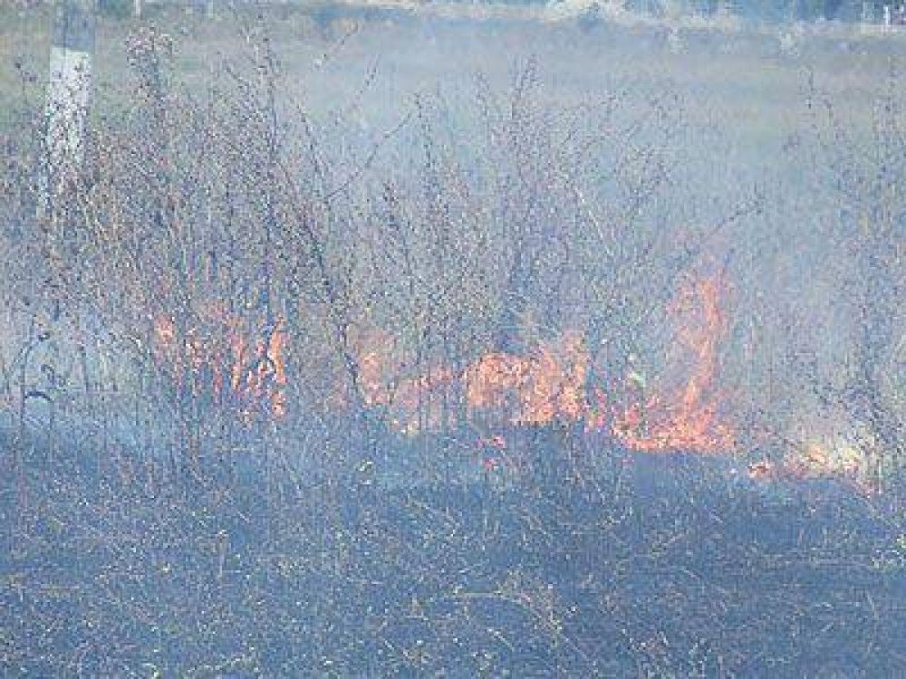 Un nuevo incendio en un predio generó preocupación en Lomas.