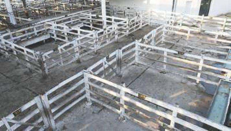 Gremio de la carne bloquea el mercado de Liniers para exigir el fin de despidos