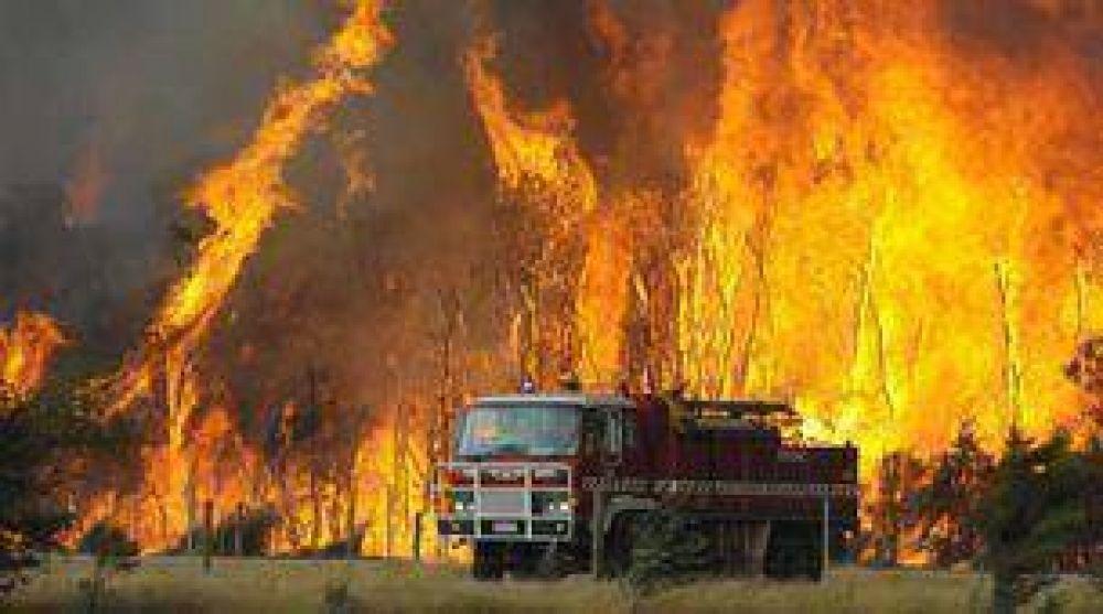 Australia: por incendios, 181 muertos, 500 heridos y 50 desaparecidos