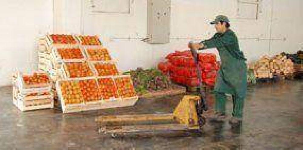 Mercado Concentrador: el 90% de la verdura que se vende es de San Luis