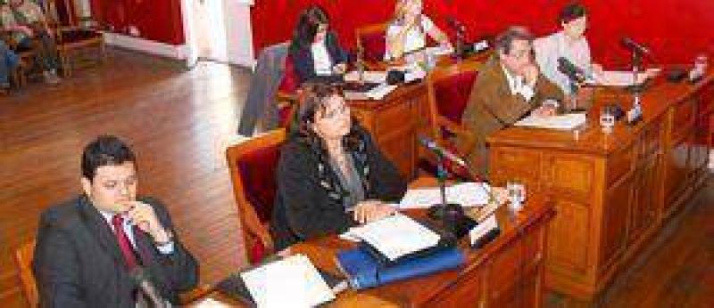 El funcionamiento de los colectivos, en el Concejo Deliberante.