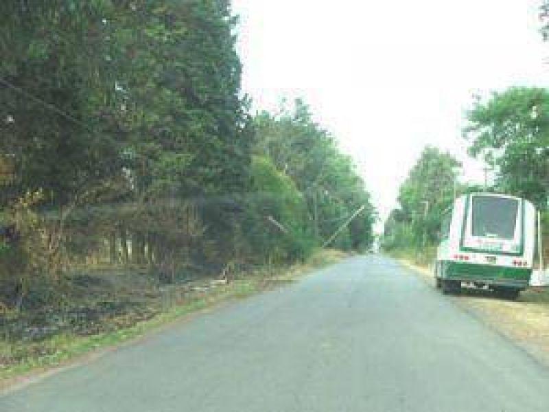 Nómina de accesos a escuelas a pavimentar, de acuerdo a la licitación pública Nro. 2.