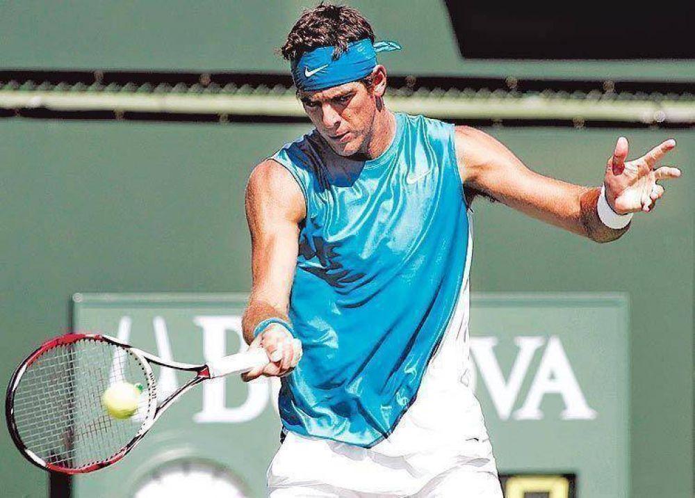 Del Potro confirmó que no estará ante Holanda en la Copa Davis.