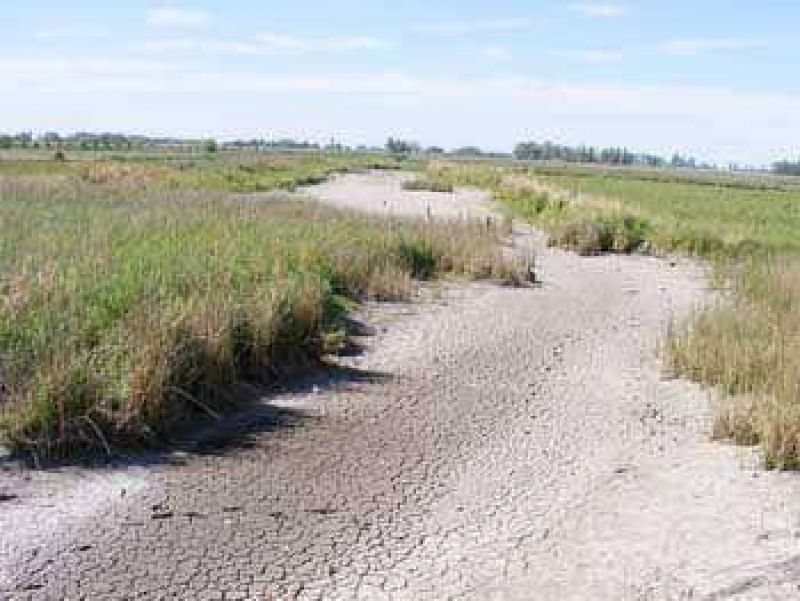 M�s 100 productores solicitaron la Emergencia Agropecuaria.
