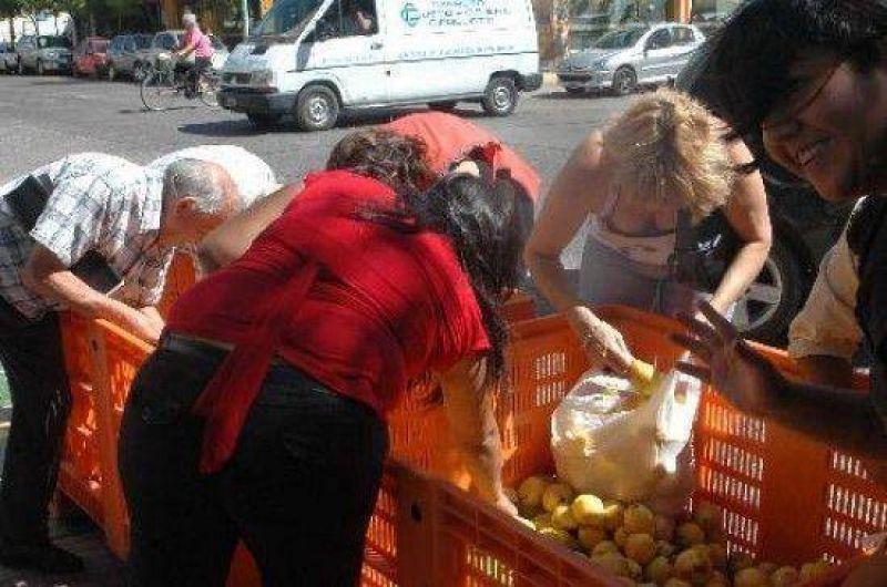 Regalan más de 25 toneladas de pera que no se pudo vender .