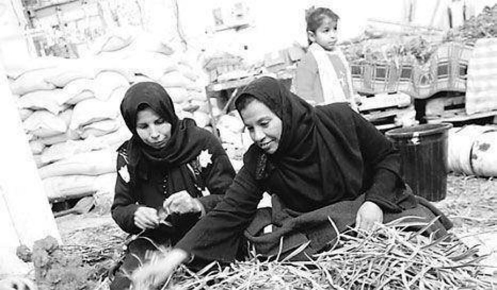 Tregua de las flores en Gaza.