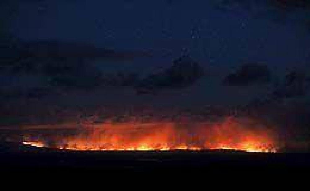 Australia: miles de bomberos combaten los incendios que siguen sin control