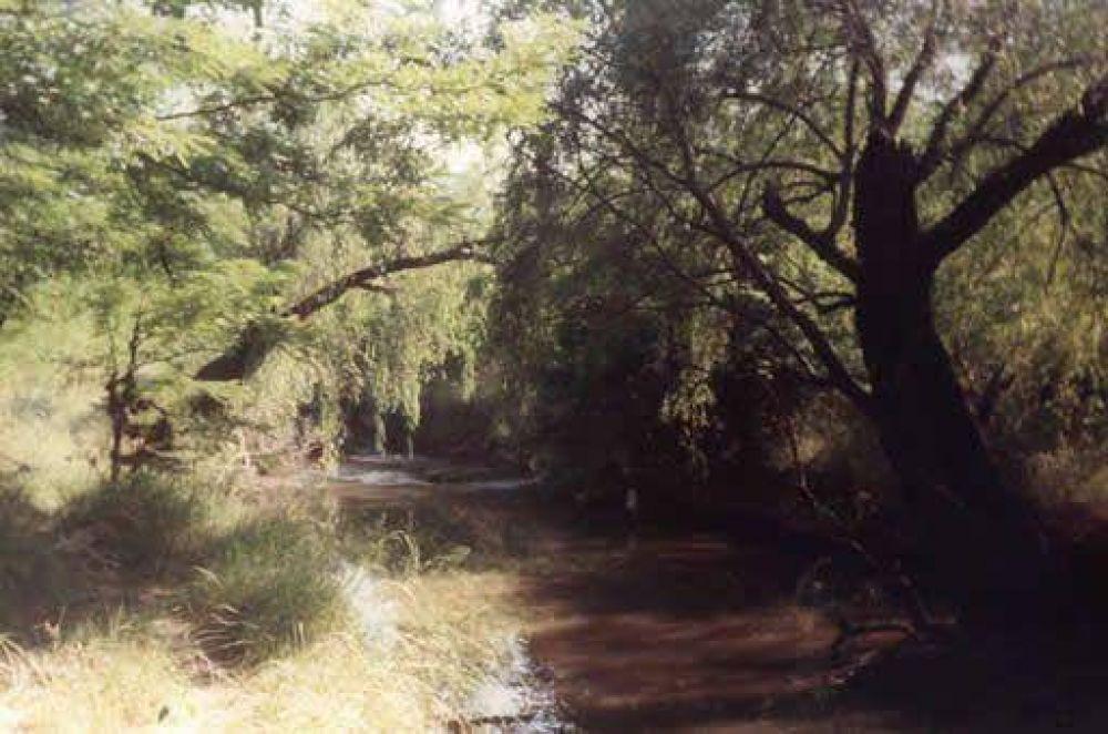 Canalización de arroyo Balta: presentarían amparo