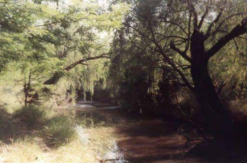 Canalizaci�n de arroyo Balta: presentar�an amparo