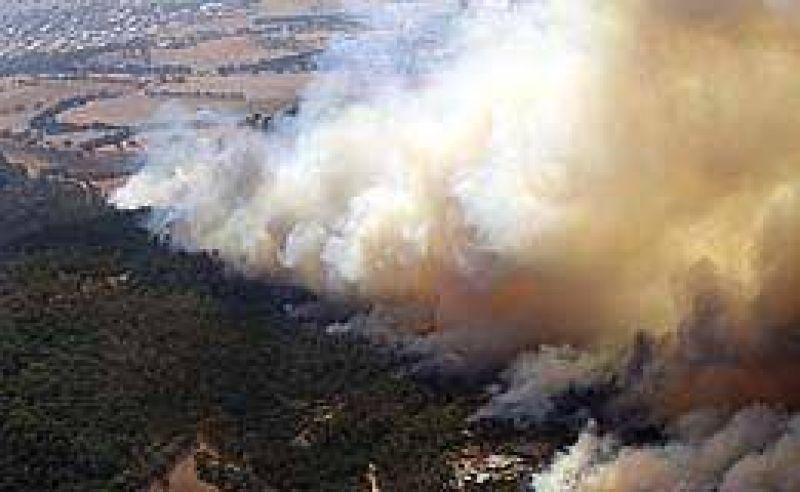 Alerta máxima en Australia por incendios: el fuego se acerca a Melbourne