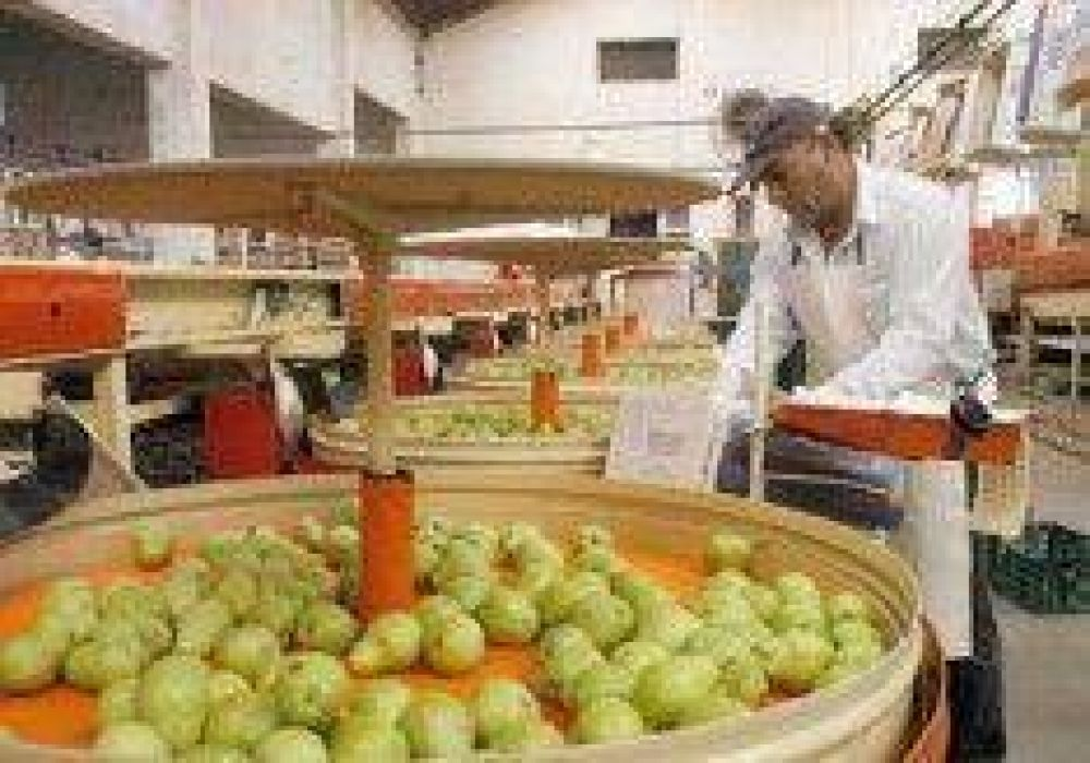 Aumento del 29% para trabajadores de la fruta.