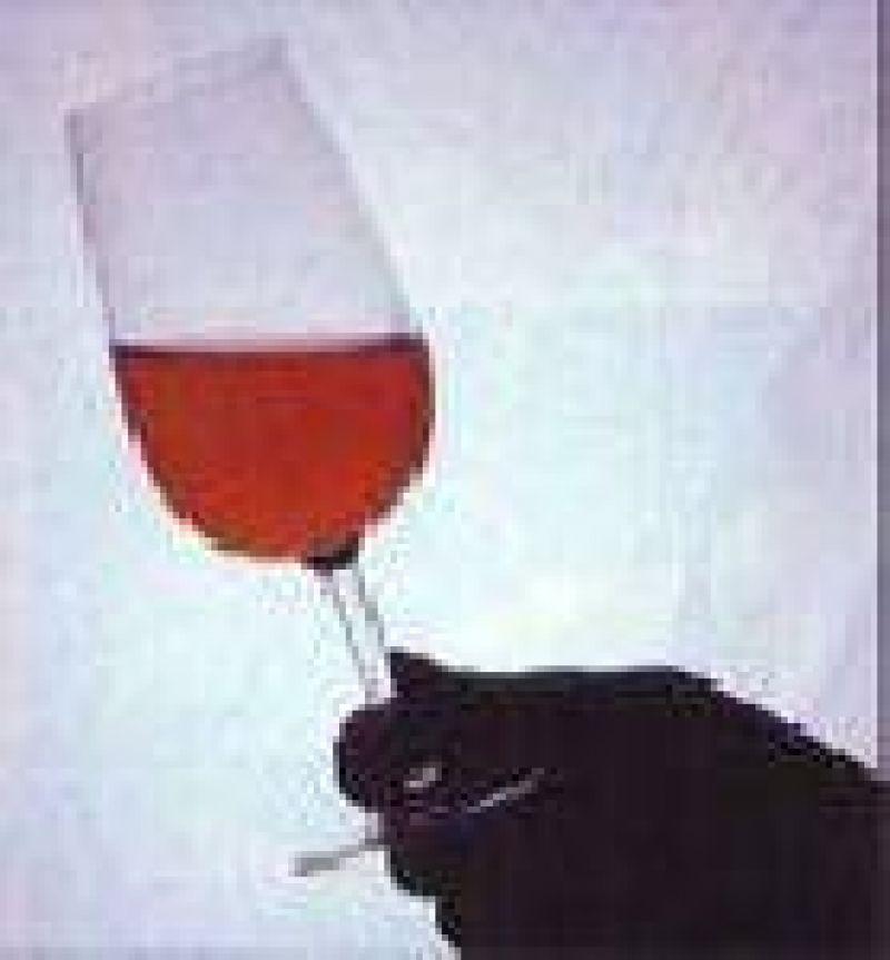 Los tintos reinaron en el Argentina Wine Awards