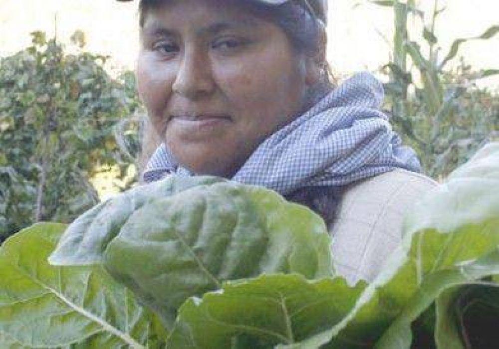 Hay 50 mil bolivianos en la región.