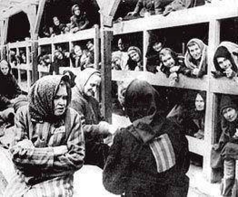 Revelan que una textil alemana usó pelo de víctimas de Auschwitz