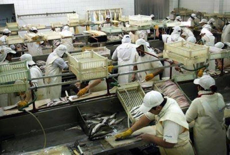 En diez d�as obreros del pescado recibir�n subsidio de 600 pesos