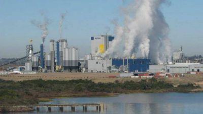 Gualeguaychú: concejales evalúan ir a La Haya nuevamente por Botnia-UPM