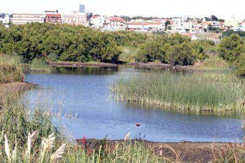 Quieren que la Reserva del Puerto sea declarada área protegida provincial.