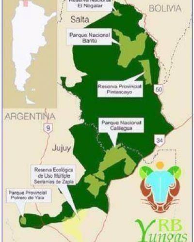 Se cumplen 10 años de la creación de La Reserva de Biosfera de las Yungas