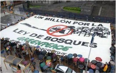 Greenpeace instó al gobernador, al intendente y al Concejo Deliberante a cumplir con la Ley