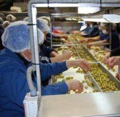 """Crisis olivícola. Consideran """"escasa"""" la ayuda oficial para el sector"""