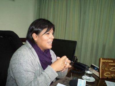 Diputados avanzan en el tratamiento de nueva ley de educaci�n para Jujuy