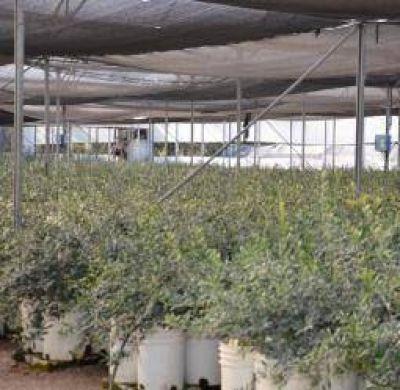 La Rioja suma una nueva firma a su holding de empresas estatales