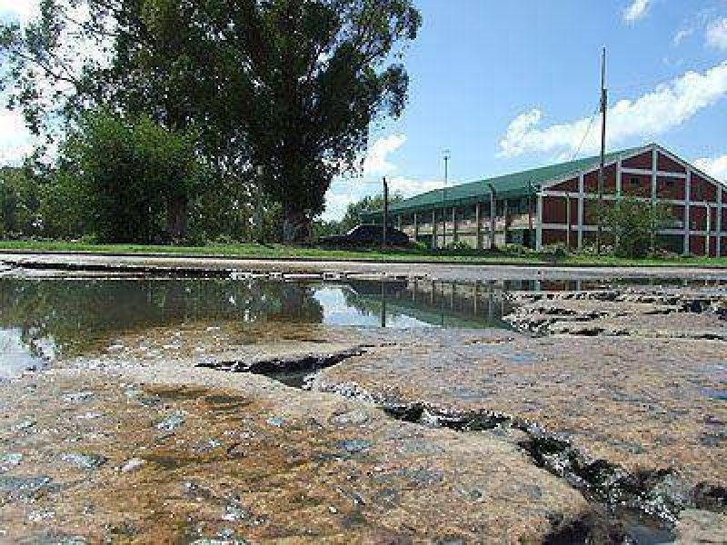 LOMAS | BACHES Y MALESTAR VECINAL    Piden obras de repavimentaci�n en la calle Merlo