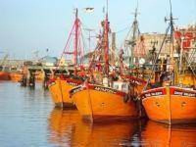 El SOMU intenta evitar un conflicto en el puerto